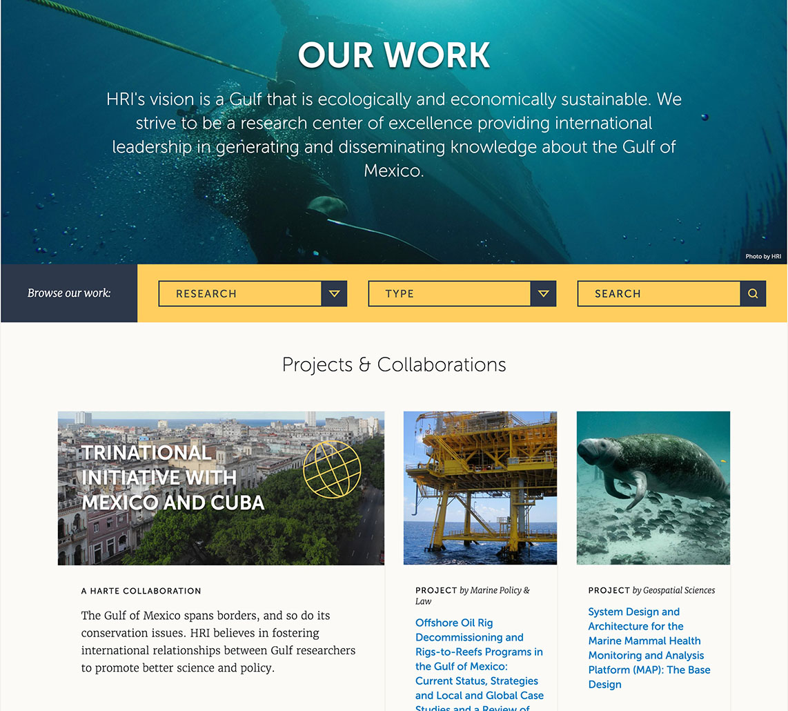 The Search Experience for the Harte Research Institute