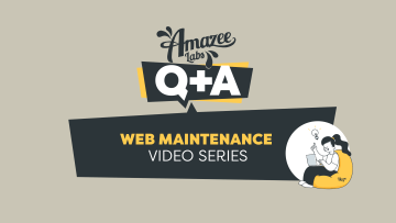 Amazee Labs Q&A Web Maintenance Video Series